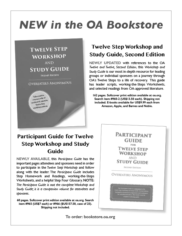Twelve Step Workshop and Study Guide and Participant Guide Flyer